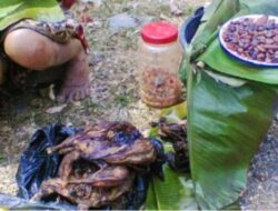 Sainafu, Pasar Unik Gunung Timau Kabupaten Kupang