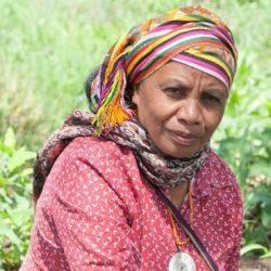 Aleta Baun, Perempuan Pejuang Lingkungan di Timur Indonesia