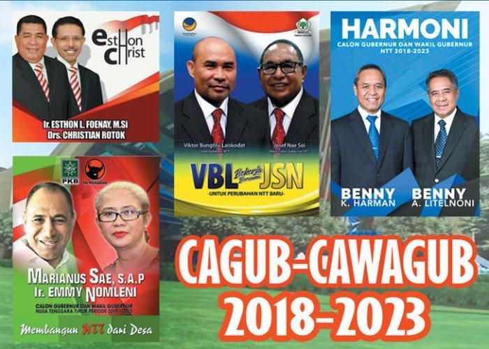 DPP PDIP tetapkan Marianus Sae 'Jatuh Korban'
