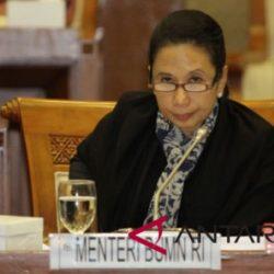 Menteri BUMN berkunjung ke Pulau Adonara