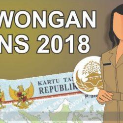 CPNS 2018 Kabupaten Ende