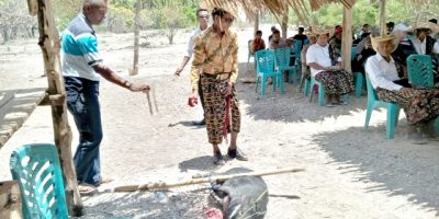 Haholok Papadak Jaga Kelestarian Hutan Mangrove Ndi'i Lifu Maubesi