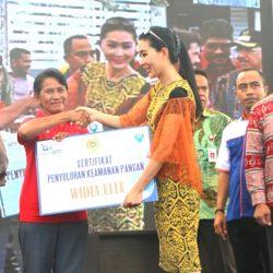 Acara launching Aliansi Sinergitas Bank NTT