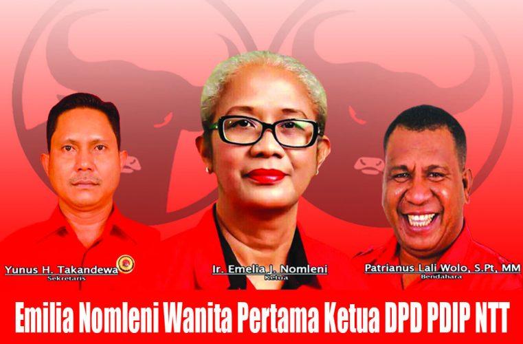 Nomleni gantikan Frans Lebu Raya sebagai Ketua DPD PDIP NTT