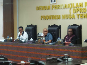 Gubernur: DKP NTT Realisasikan Proyek 1 Juta Kerapu Rp 7,5 M Tanpa Rencana
