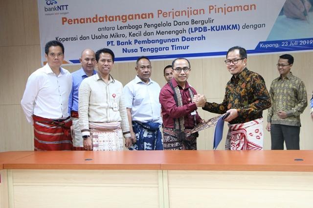 LPDB Buka Akses Pembiayaan Bagi Peternak Sapi di Kupang