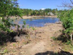 Danau Baru di Sikumana yang Muncul Pasca Badai Seroja Mulai Kering