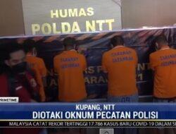 Berhasil Terbongkar, Pecatan Polisi di Kupang Jadi Otak Sindikat Pencurian Hewan Ternak